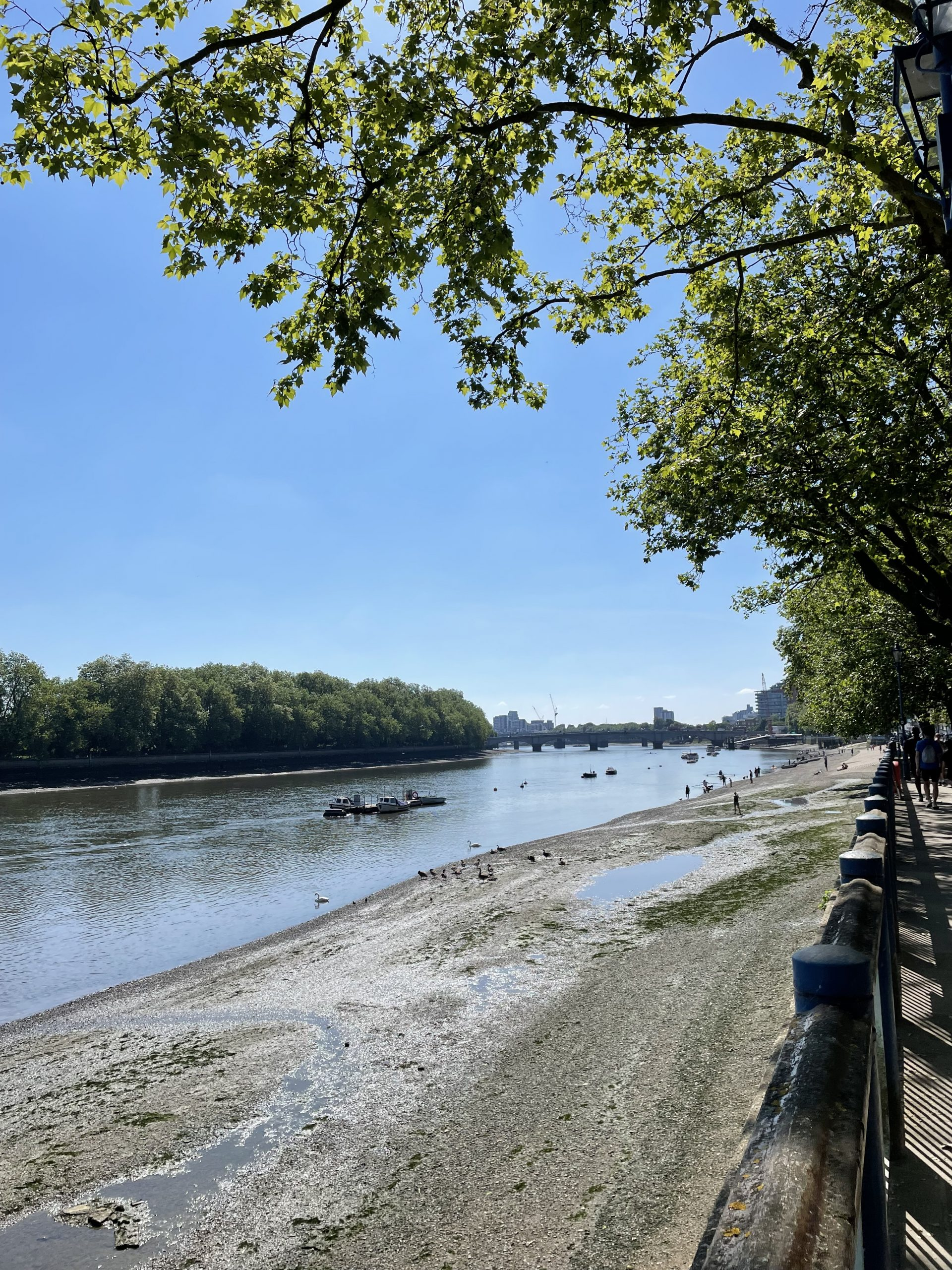 Is Putney in London a Nice Place to Live